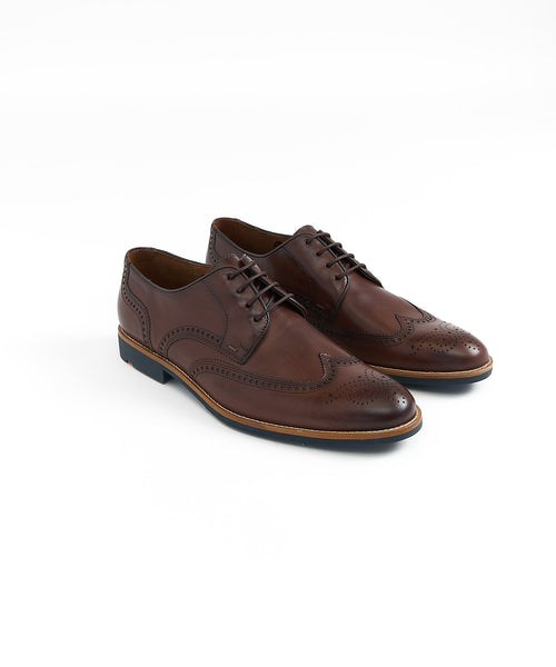 SKARA WINGTIP DERBY SHOE / BROWN