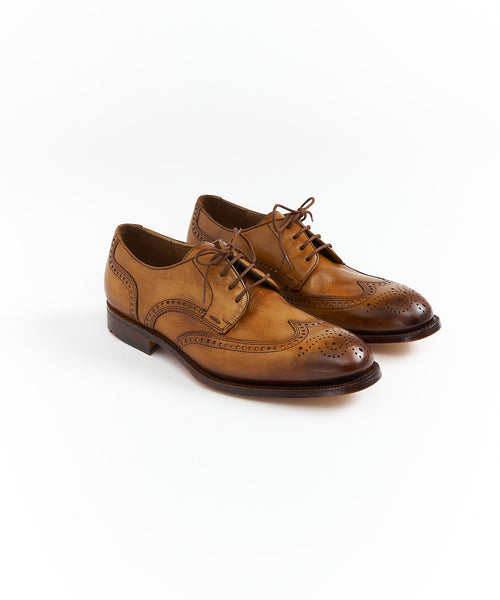 OLON WINGTIP DERBY SHOE / COGNAC