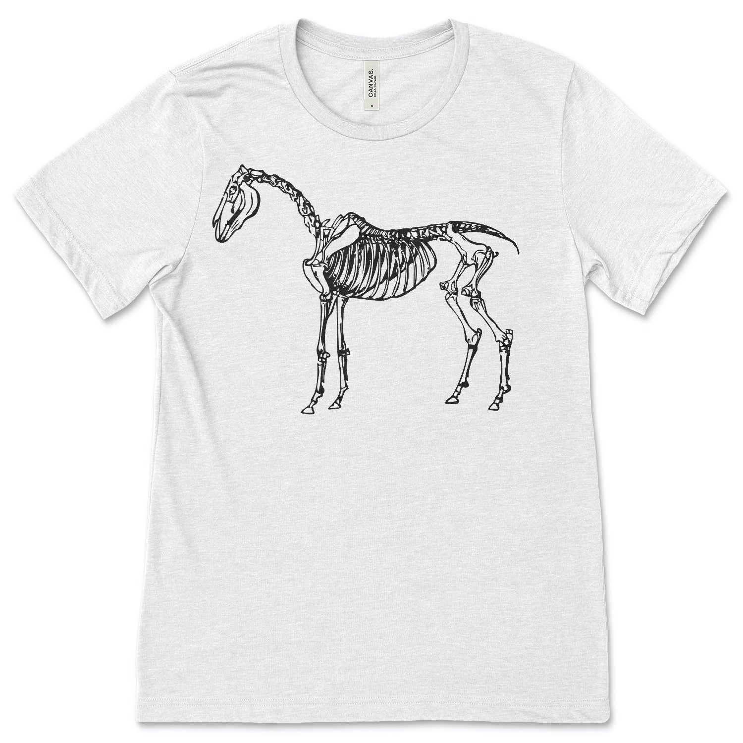 Horse Skeleton - ONE HORSE THREADS