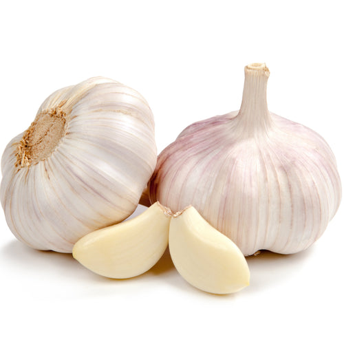 Purple Garlic - 4 bulbs ~ .5 LB bag - Mimi and Ry Produce