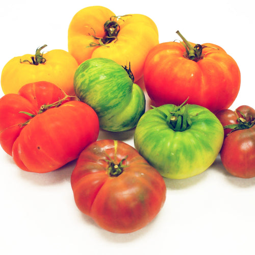 Local Heirloom Tomatoes -  3 pieces ~ - Mimi and Ry Produce