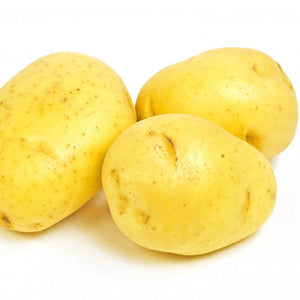 Potatoes - Mini - Yellow or Red- Organic - Local ~1.5 lb bags - Mimi and Ry Produce