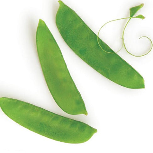 Snow peas - .5 LB bag - Mimi and Ry Produce