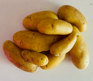 Fingerling Potatoes - local and organic (1 lb)