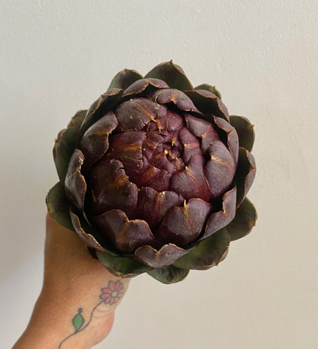 Violetta Artichokes - Mimi and Ry Produce