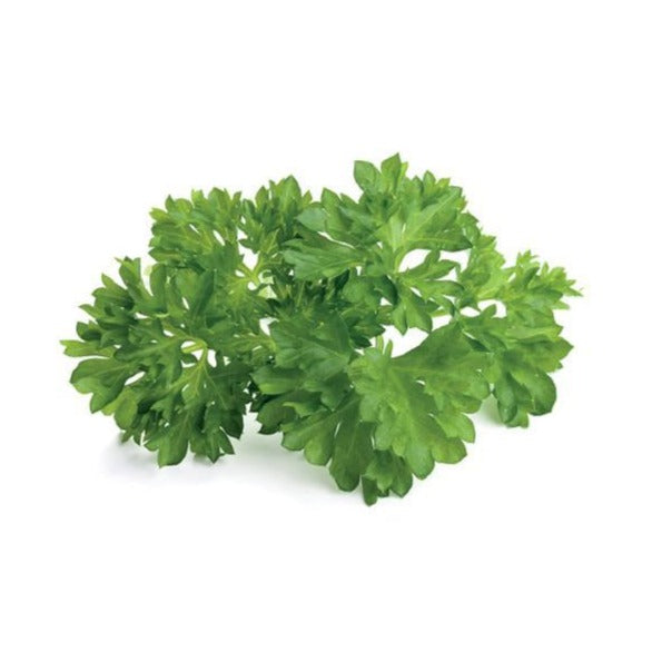 Parsley - Flat - Mimi and Ry Produce