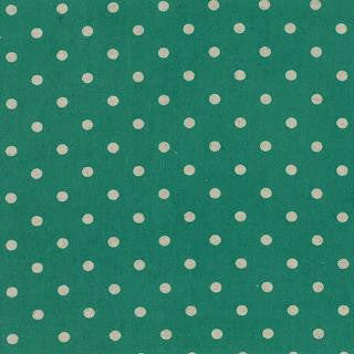 Momo - Mochi Dot - (Teal) | Canvas