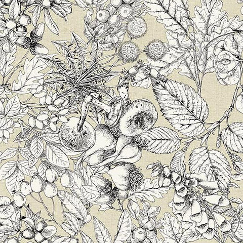 Encyclopedia Terrestria - Toile (Neutral) | Broadcloth