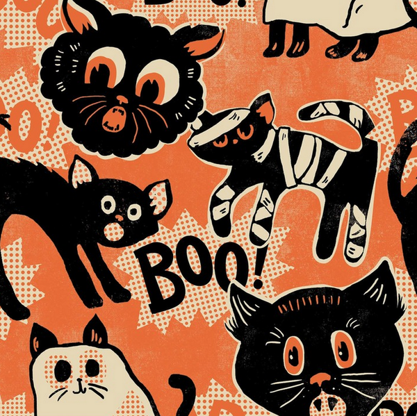Spooktacular - Scaredy Cat (Orange) | Broadcloth