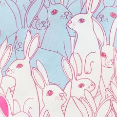 Hipster Hare (Light Blue/Pink) | Broadcloth