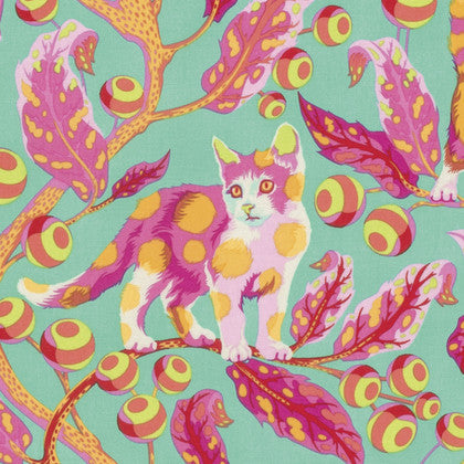 Tabby Road - Disco Kitty (Strawberry Fields) | Broadcloth
