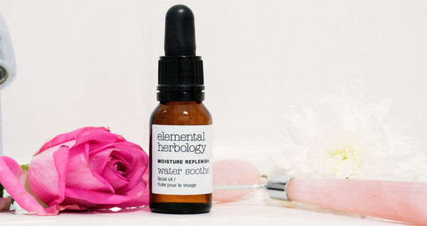 The Moisture Replenish Hydrating Facial