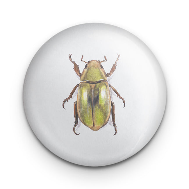 Scarab Beetle Golden Badge