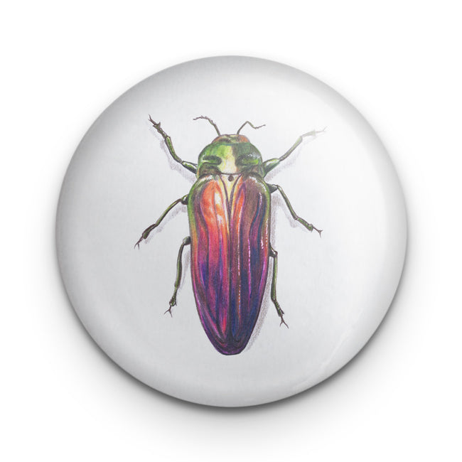 Scarab Beetle Jewel Badge