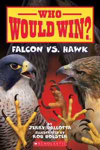 Falcon vs. Hawk (Who Would Win?)