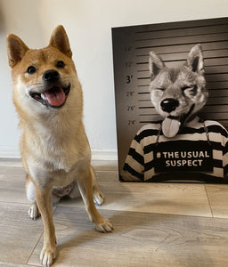 THE USUAL SUSPECT - CUSTOM CANVAS