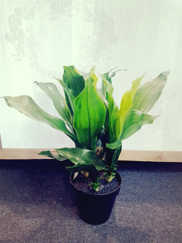 Artificial Potted Dracena