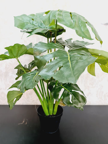 Artificial Philodendron Imperial Plant