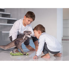Load image into Gallery viewer, SASSI - THE AGE OF THE DINOSAURS - 3D Tyrannosaurus and Book Set