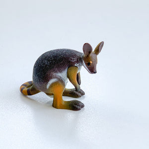 ANIMALS OF AUSTRALIA - Small Rock Wallaby