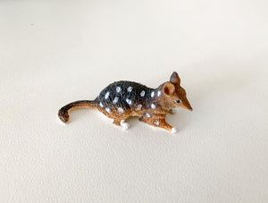 ANIMALS OF AUSTRALIA - Small Quoll