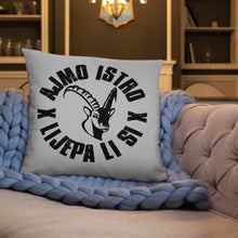 """Load the picture into the gallery viewer, """"Istra"""" - pillow"""