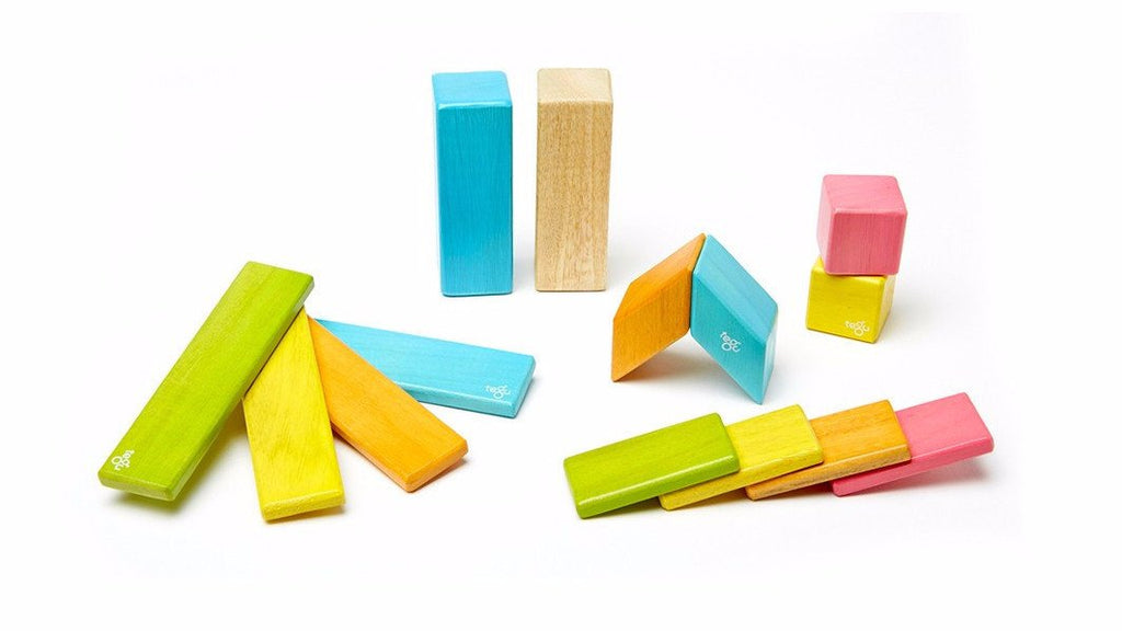 Magnetic Block 14 Pc Set - Tints by Tegu - Pacifier