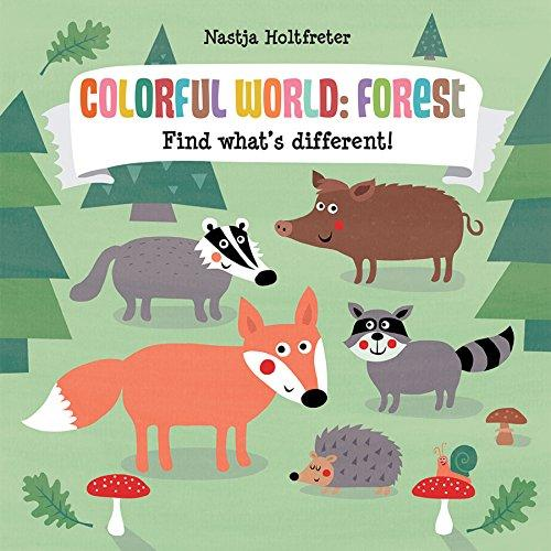 Colorful World: Forest Usborne Books Books
