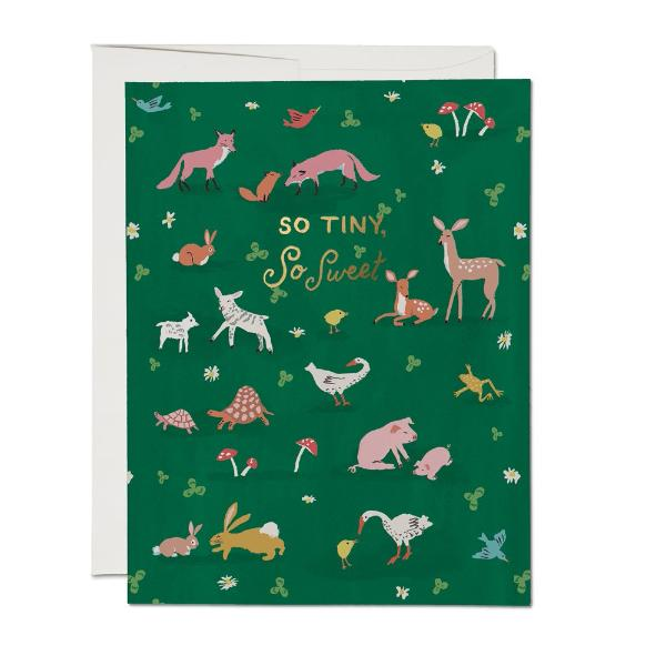 Tiny Animals Card
