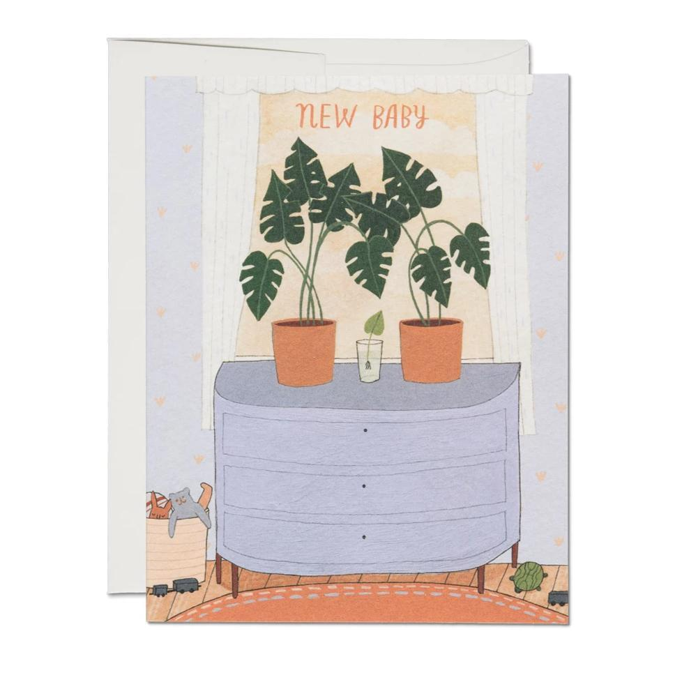 Nursery Plants Card Red Cap Cards Paper Goods
