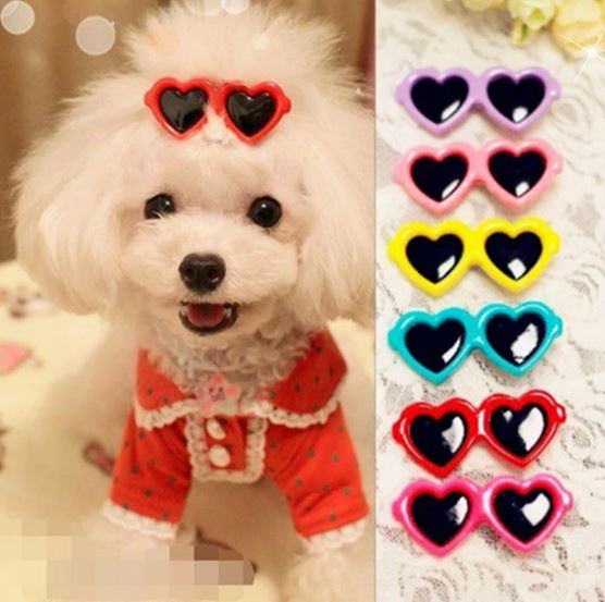 Dress-up items for your cat or dog. Clothing, hairbows, sunglasses, and other dress-up items for pets.