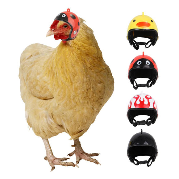 Chicken helmet
