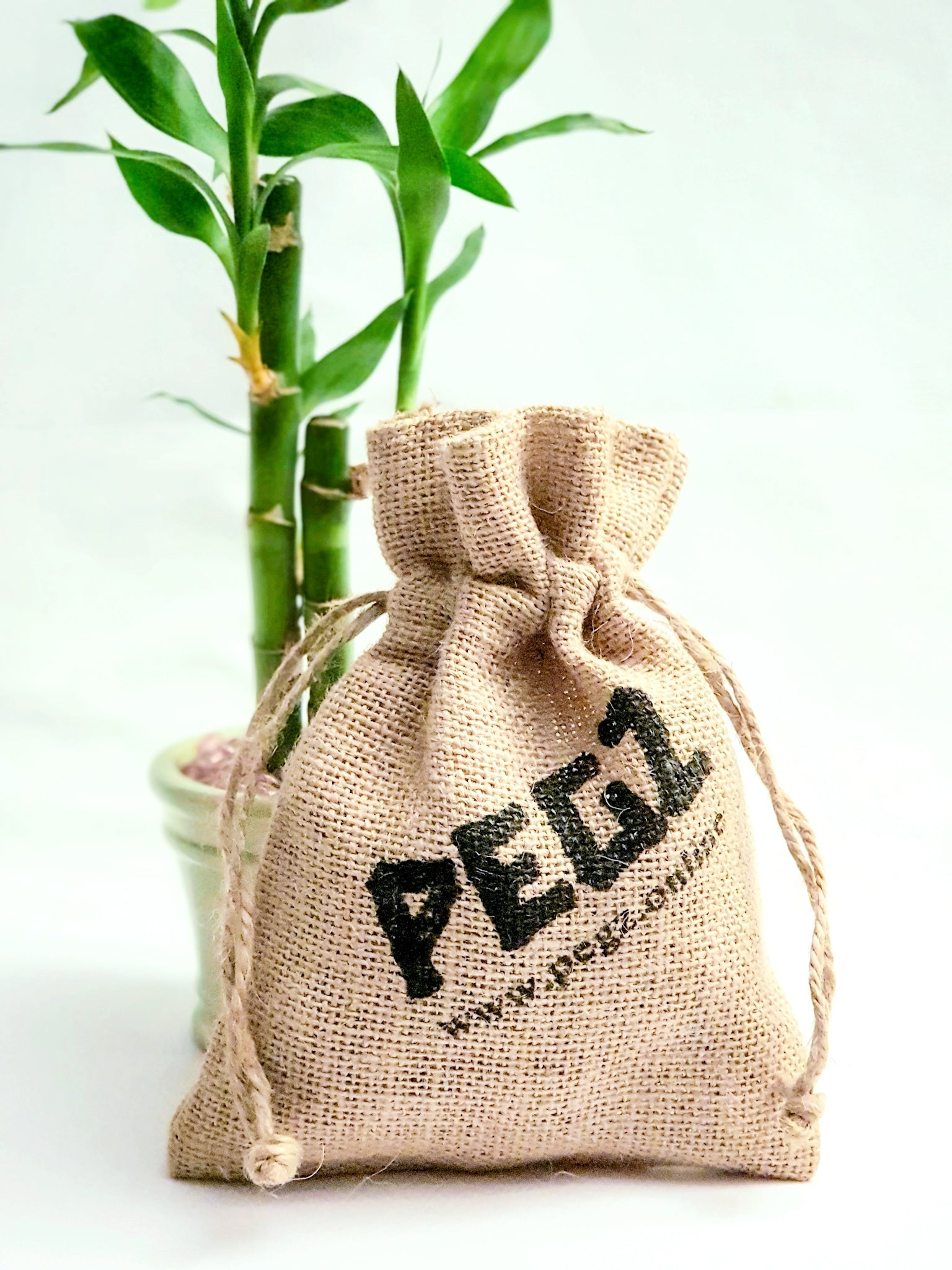 PEGZ jute drawstring bag next to a lucky bamboo potted plant