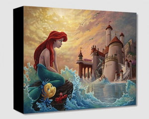 """Ariel's Daydream"" by Jared Franco"