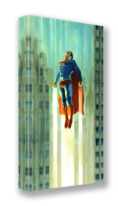 Superman Flight by Christopher Clark