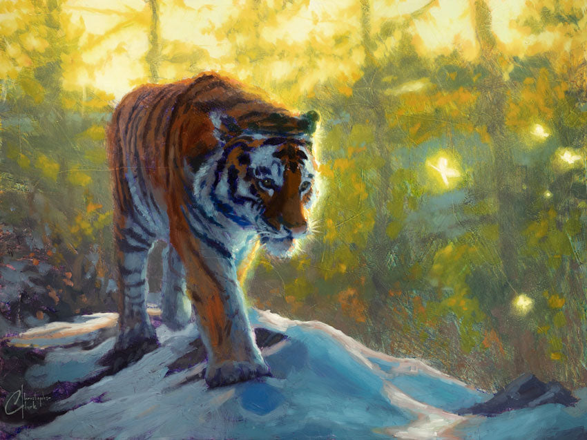 Exploring the Wild by Christopher Clark
