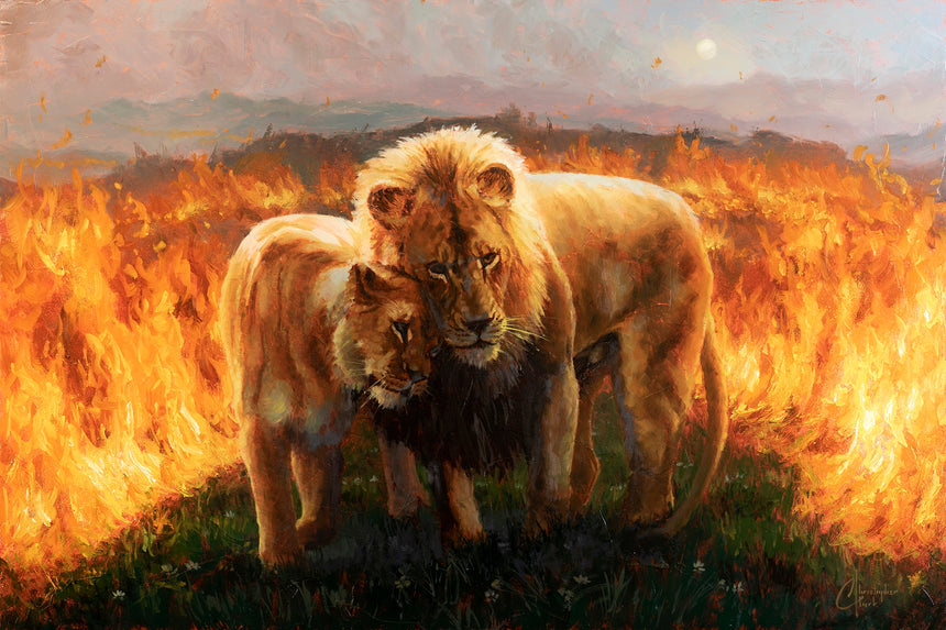 Lion King by Christopher Clark