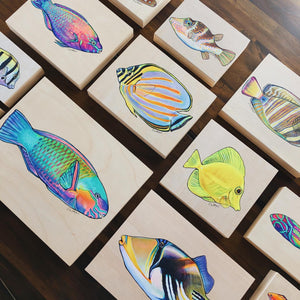 Painting My Hawaiian Fish Collection