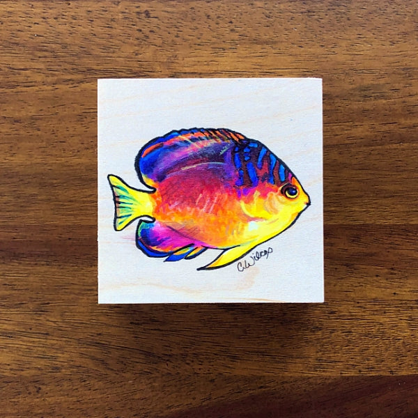 Nahacky's Angelfish - (Original)