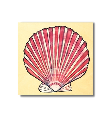 Scallop Shell (Original)