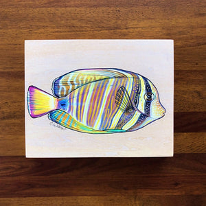 Sailfin Tang (Mane'one'o) - (Original)