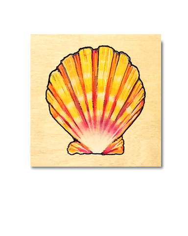 Sunrise Shell (Original)