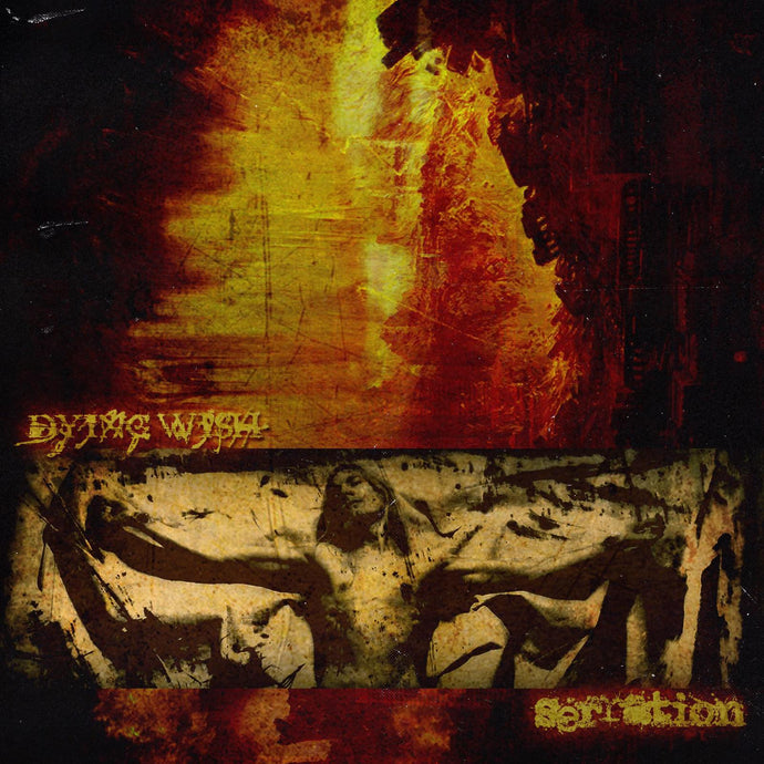 Dying Wish / Serration Split 12
