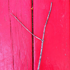 Y shaped stick on red background