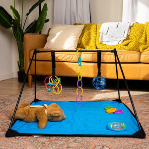 Lay and Play Adventure Mat