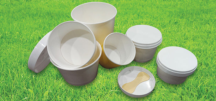 Disposable Ice Cream Containers