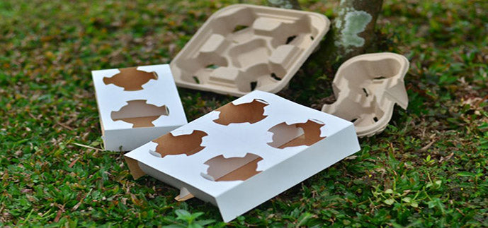 Disposable Cup Carrier Trays