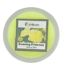 Load image into Gallery viewer, Evening Primrose Deli Pot
