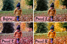 Load image into Gallery viewer, 15 Desktop Presets AUTUMN