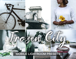 Mobile Lightroom Presets - 1 preset - Frozen City - moody presets, instagram presets, blogger presets, best presets, digital, photo editing - KatManDooPRESETS